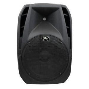 Peavey PBK-15 2-Way Speaker