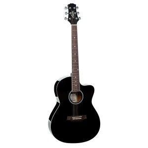 Ashton D10C Acoustic Guitar