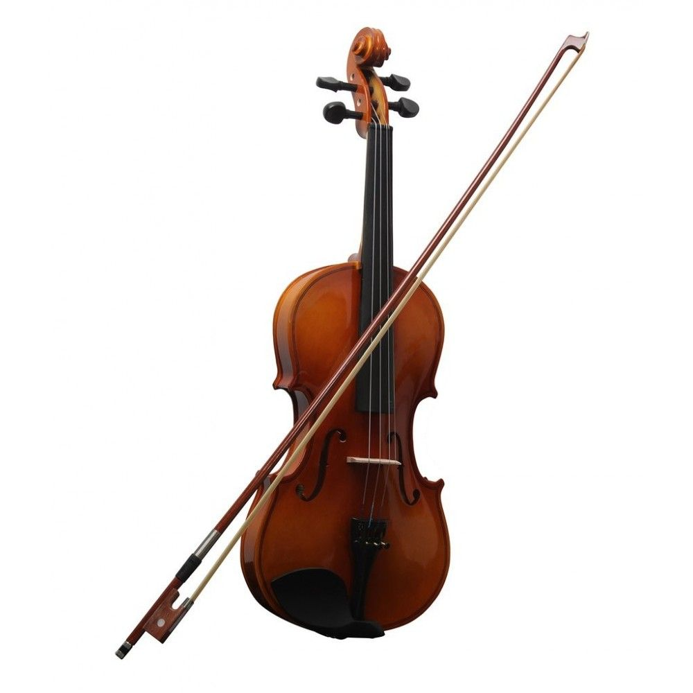 Procraft PR VS1 Violin - Natural (4/4 Full Size)
