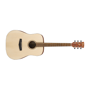 Ibanez PF10 Acoustic Guitar
