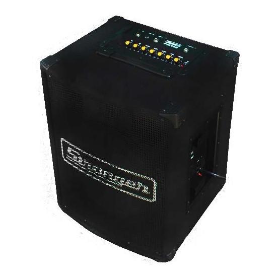 Stranger PM102 Amplifier